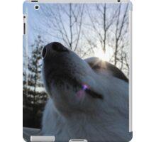 drive.  iPad Case/Skin