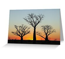 Kimberley Boabs at Sunset Greeting Card