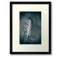 Old feather on the beach Framed Print