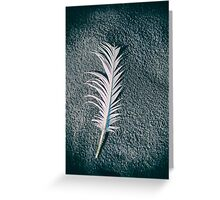 Old feather on the beach Greeting Card
