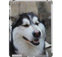 drive 003.  iPad Case/Skin