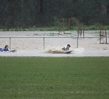 body boarding on the football oval by normab