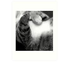 Sleeping cat paws Art Print