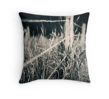 Fence #1 Throw Pillow