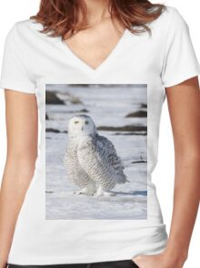 Perfect Plumage Women's Fitted V-Neck T-Shirt
