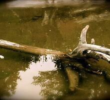 Drowning by madgabi