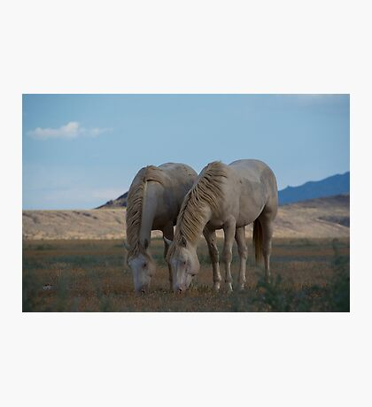Inseparable Photographic Print