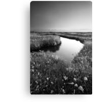 Mirror Mirror on the Marsh BW Canvas Print