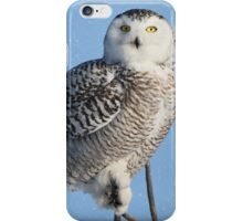 Balancing Talent (with snow) iPhone Case/Skin