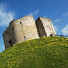 Cliffords Tower - York by maxxx