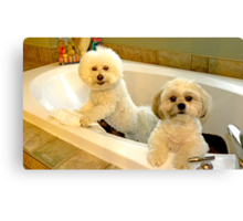Baths with NO Water are Fun ! Canvas Print