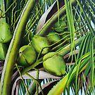 Green Coconuts from the Tropics by Dominica Alcantara