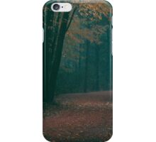 foggy autumn walk.  iPhone Case/Skin