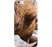 Grizzly Bear on the Rocks  iPhone Case/Skin