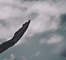 Atmospheres 10 by Camilo Bonilla