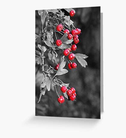 Berry Power Greeting Card