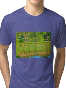 Geese on a pond bank 1 Tri-blend T-Shirt