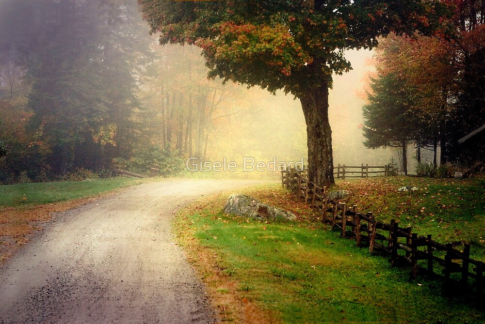 Somewhere on the road... by Gisele Bedard
