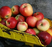 Truckload of Apples by vvfineartphotog