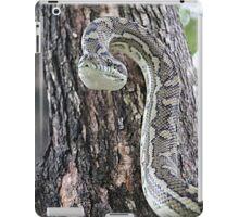 Python Alert iPad Case/Skin