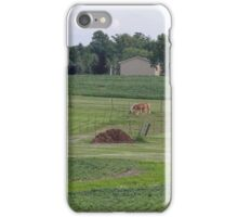 A Summer Country Landscape iPhone Case/Skin