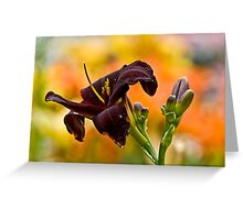 """Daylily """"Rootbeer"""" Greeting Card"""