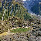 Alpine NZ by Harry Oldmeadow