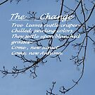 The Change by Bea Godbee