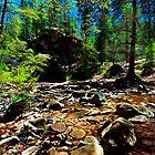 Oak Creek, Arizona by LudaNayvelt
