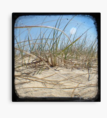 Grassy Dunes - TTV #2 Canvas Print