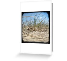 Grassy Dunes - TTV #2 Greeting Card