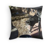 Coming in from checking out yard! Throw Pillow