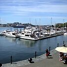 Inner Harbour, Victoria by George Cousins