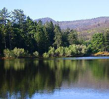 CUYAMACA REFLECTION by fsmitchellphoto