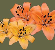 Gorgeous yellow and orange tiger lily flower photo art. by naturematters