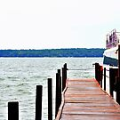 Cool Blue Walk onto the Dock by MWags