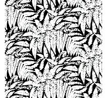 Tropical print in black and white with fern leaves Photographic Print