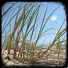 Grassy Dunes - TTV #3 by Kitsmumma