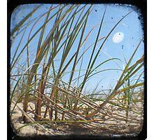 Grassy Dunes - TTV #3 Photographic Print