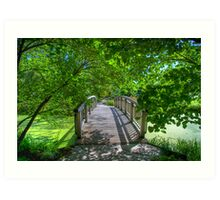 Shady Footbridge Art Print