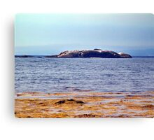Indian Harbour, Nova Scotia Canvas Print