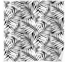 Tropical print in black and white with palm leaves Poster