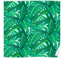 Tropical print in multiple green colors with banana palm leaves Poster