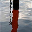 Pier Reflections -652 by Albert Sulzer