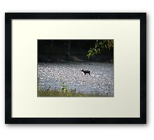 what a day to cool off.... Framed Print