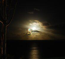 spooky night by Adam Fisher