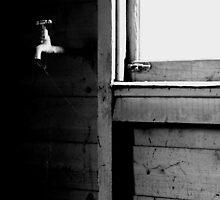 Cobweb by Ell-on-Wheels
