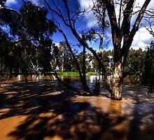 Murrumbidgee River, Wagga Beach, Wagga Wagga, NSW. by Darren Wright