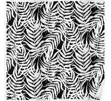 Tropical floral print with palm leaves in black and white Poster