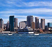 Sydney Skyline Panorama by Chris  Randall